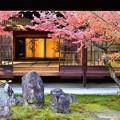 写真: 中庭中央には三尊石