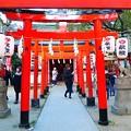 Photos: 楠本稲荷神社