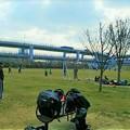写真: みなとのもり公園(神戸震災復興記念公園)
