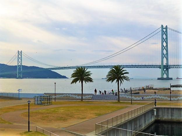明石海峡大橋が望める