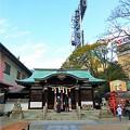 素盞嗚神社 社殿