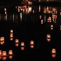 写真: 狩野川灯ろう流し1