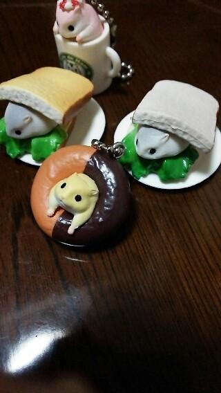 ハムちゃぁぁん(ノ´∀`*)