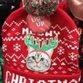 Photos: Christmas Shopping3