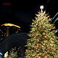 Welcome ! ・・・ 2010 Christmas of Tokyo X?