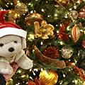 やっとおわりましゅよ~~せりかホッ! ・・・ 2010 Christmas of Tokyo IIXI