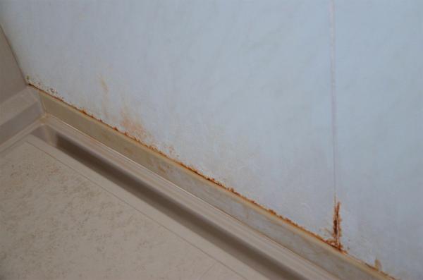 洗い場の足元の壁も錆が浮いている