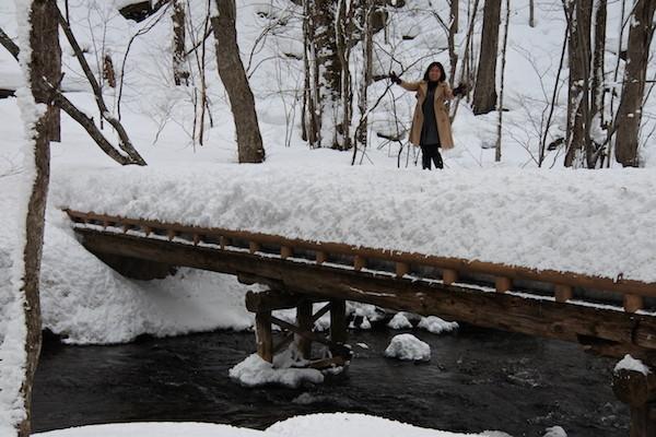 遊歩道の橋の上に積もった雪の上