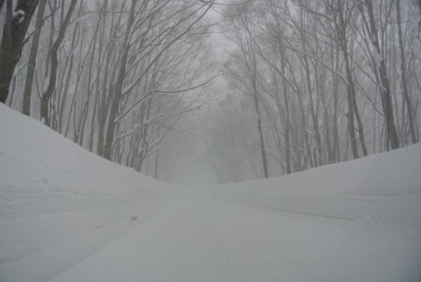八甲田付近では激しい吹雪に遭遇