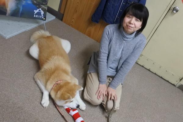 スタッフの女性が「ぜひ秋田犬に会いに来てください」と言っていました。