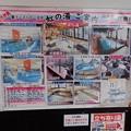 写真: 28 12 福岡 筑紫川温泉 虹の宿 花景色 2