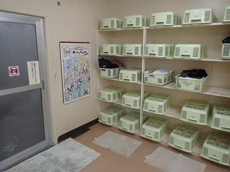 29 1 伊豆 駒の湯源泉荘 6