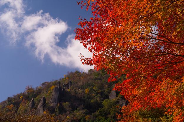 秋の耶馬溪♪?