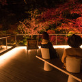 竈門神社ライトアップ(3)