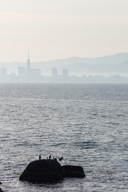 博多湾の朝景♪