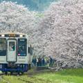 Photos: 松浦鉄道浦ノ崎駅♪