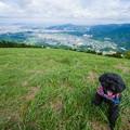 写真: 米の山展望台♪