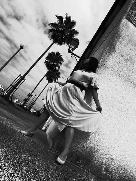 写真: 風に吹かれて