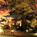 写真: 竈門神社紅葉ライトアップ