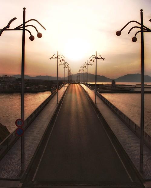 Photos: なみかけ大橋