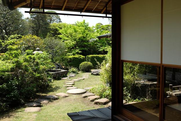 遠山記念館の庭園