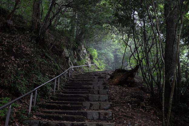 備中松山城の石段