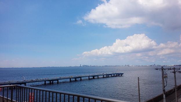 市原市海釣り公園1