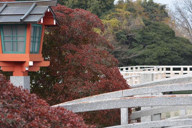 京都・長岡天神(2)