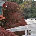 Photos: 京都・長岡天神(2)