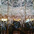 羽田空港国際ターミナルのイルミ