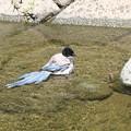 写真: オナガさんの水浴び