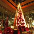 写真: 丸の内クリスマスツリー