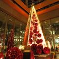丸の内クリスマスツリー