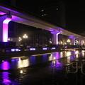 Photos: 阪神淡路大震災の追悼のライトアップ