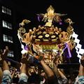 夜の 神輿