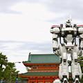 Photos: 平安神宮×イングラム