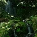 いしくぼの滝  小木津山自然公園