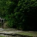 Photos: 681 厳島神社 諏訪の水穴
