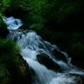 写真: 生田の滝  中滝