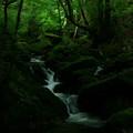 写真: 生田の滝  見返りの淵