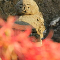 Photos: 若葉町のお地蔵様