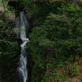 写真: 650 八反原の滝