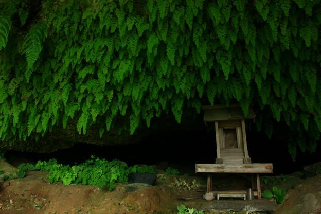 329 浜の宮 雷神様の洞窟