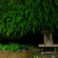写真: 384 浜の宮 雷神様の洞窟