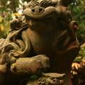 写真: 館山神社の狛犬 川尻