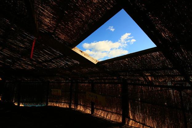 Photos: 174 鵜の岬 ウミウの捕獲場