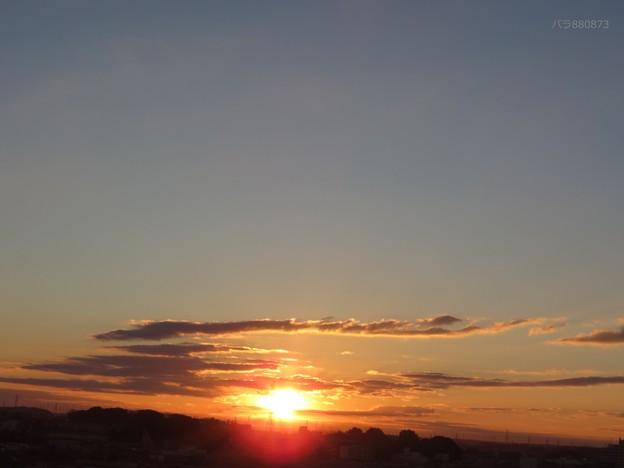 Photos: 朝陽の下に赤い輪が
