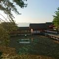 Photos: 嚴島神社