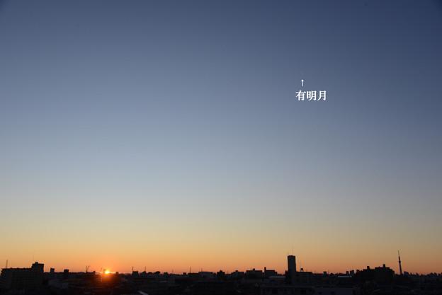 日の出と有明月