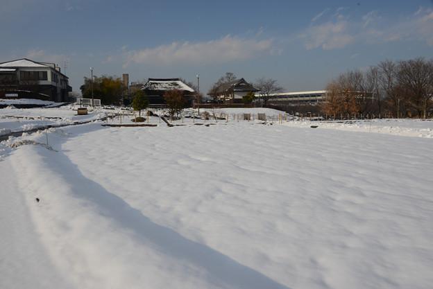 雪景色の都市農